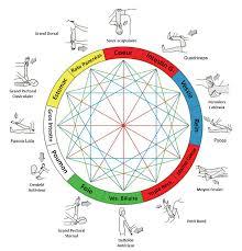 T.F.H. Brain gym & Kinésiologie, leur origine, leur principe, leurs bienfaits, leur complément à la réflexologie plantaire Olp.