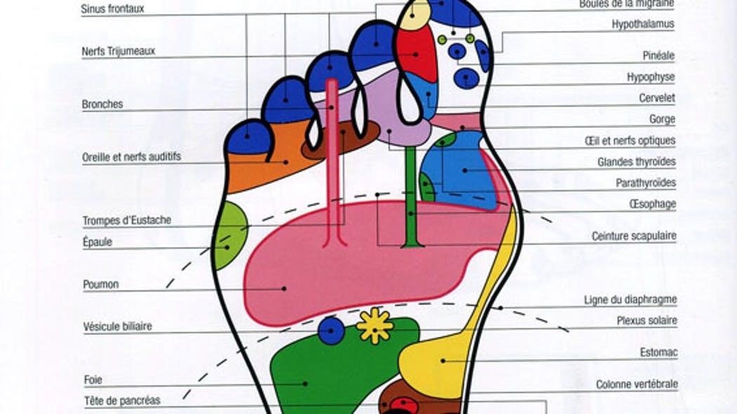 Traitement de la douleur via la réflexologie Olp